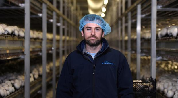Kevin Reilly, owner of Reilly Mushrooms in Athlone.