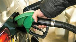 Fuel an issue as service sector sees sharp rise in activity