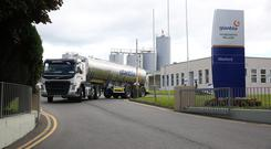 Glanbia Wexford. Photo: Finbarr O'Rourke