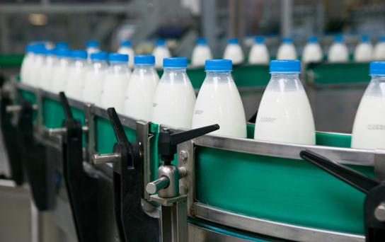 Dairy processors have sought assurances from the Government