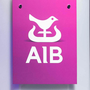 AIB was one of two initial finance providers who agreed to participate in the scheme. Photo: Shane O'Neill / SON Photographic