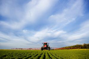 Trouble on the horizon: Brexit could inflict deep damage upon agriculture and the agri-foods industries