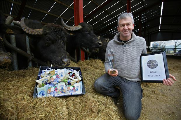 Johnny Lynch of Macroom Buffalo Cheese: 'There's 25pc growth forecast for buffalo mozzarella cheese year-on-year here for the next three to four years. We didn't expect that kind of growth.'