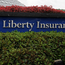 The application, which came before the Commercial Court yesterday, is part of a plan to consolidate Liberty's Irish, Portuguese and Spanish insurance businesses