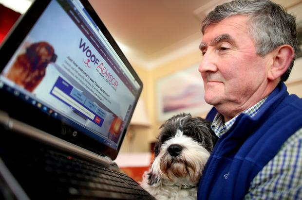 'This is my third career and it's a big departure for me. I have to get it right,' says Gerry Molloy of WoofAdvisor.com. Photo: Gerry Mooney
