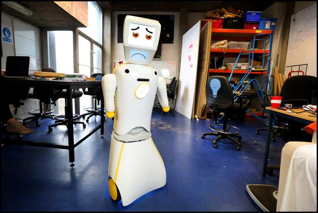 Stevie The Robot at the Robotics and Innovation Lab (RAIL) at TCD. Photo by Steve Humphreys