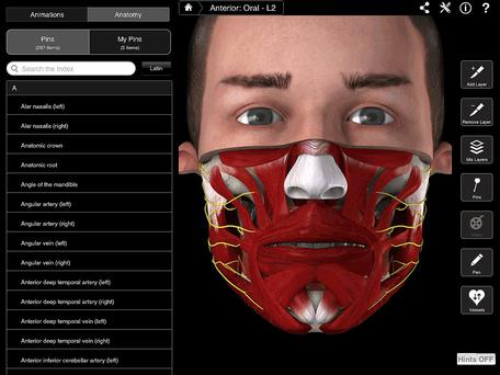 3D4Medical's 3D anatomy apps have generated sales of $20m in the three years they've been in app stores.