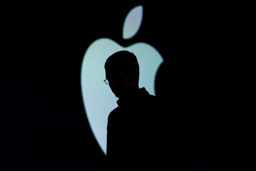 Tim Cook's Apple has called a vote by stockholders looking for more diversity at the top echelons of the tech giant a 'burdensome and not necessary' move.