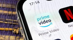 Amazon Prime and Netlfix show the subscription model is here to stay