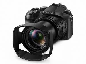 The Panasonic FZ2000 is a great value option for your travels