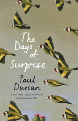 The cover of Days of Surprise