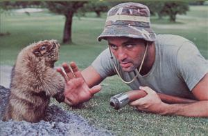 Bill Murray in Caddyshack