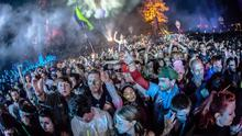 Festival fun: Revellers at last year's Electric Picnic