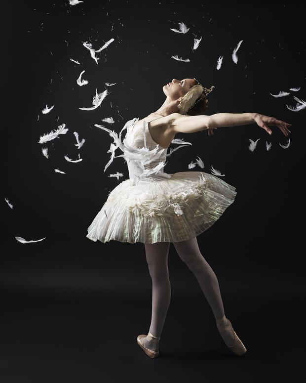 Jane Magan in Ballet Ireland's Swan Lake 2014. Photo: Ros Kavanagh.