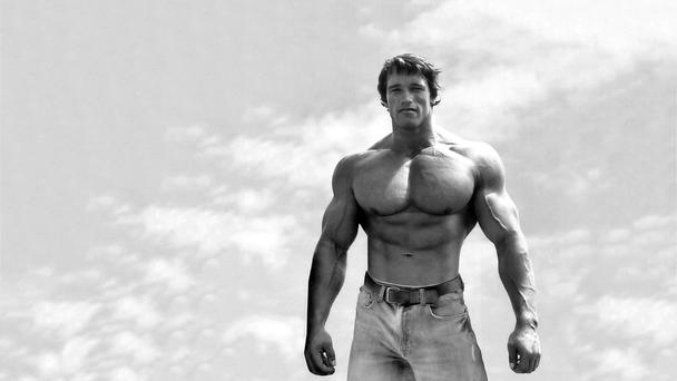 Muscle man: Arnold Schwarzenegger arrived in America in 1968 with a virtually impenetrable Austria accent