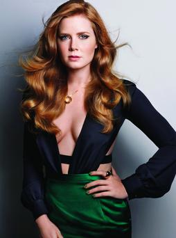 JOURNEY: Amy Adams's path to name-brand fame has been fascinating