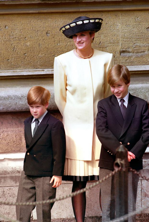 Essential viewing: Despite the hype, the only thing Diana Our Mother really revealed was how much Harry and William love and miss their mum
