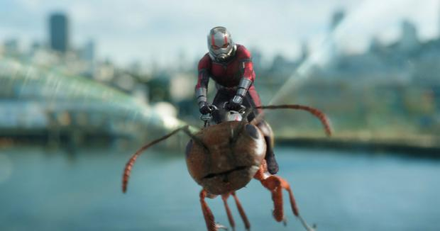Ant-Man on a flying ant
