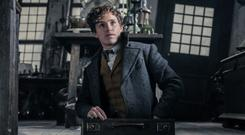 Eddie Redmayne is good as Newt but he can't save a movie that will test your patience