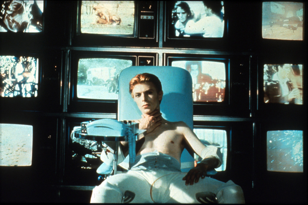 Perfect fit: Bowie as melancholy alien Thomas Jerome Newton in The Man Who Fell to Earth