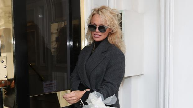 Pamela Anderson visits Julian Assange at London prison
