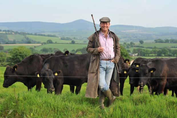 'You've got to do the digging and the weeding': Actor Philip Judge at home in Wicklow