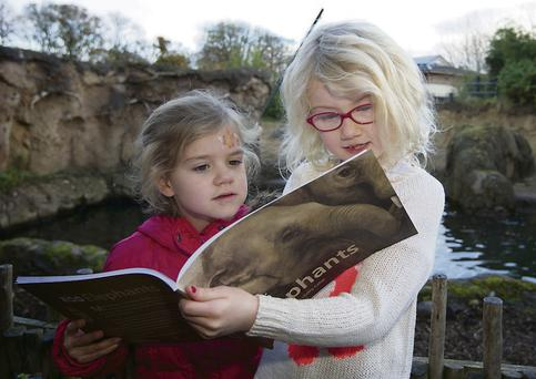 Ella Kiernan (6) and Mia Creighton (7) read Dublin Zoo Elephants