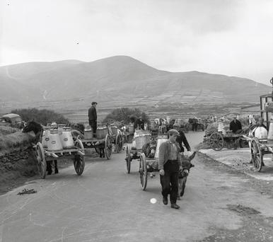 Country life: a farming scene from rural Ireland