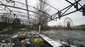 Apocalypse now: Preppers and bunker-makers are banking on the next Chernobyl, which is said to be bouncing back with endangered species making a return1