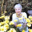 Author Alice Taylor