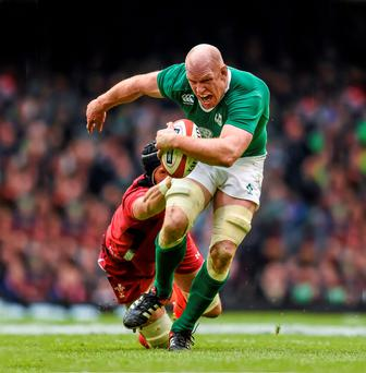Cutting to the chase: Paul O'Connell's memoir is much more revealing than the humdrum affair of his former teammate, Brian O'Driscoll