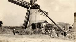 Hard labour: Slaves pictured on a sugar plantation in Barbados around 1890