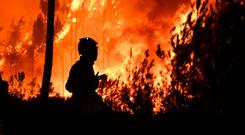 Too hot to handle: a firefighter tackles a wildfire in Portugal in 2017. Photo by patricia de melo moreira/afp/getty images