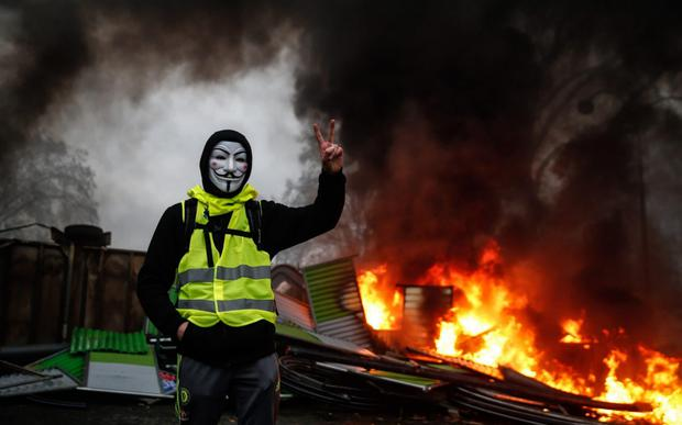 An accidental Nostradamus: even though Serotonin was written before their protests, Houellebecq predicts the rise of the populist gilets jaunes