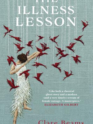 The Illness Lesson by Clare Beams