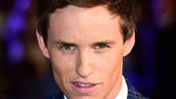 Eddie Redmayne is on a hot streak on the awards circuit for his portrayal of Professor Stephen Hawking