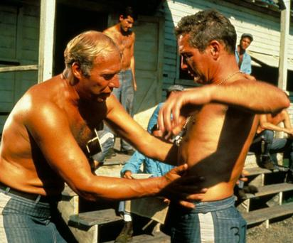 George Kennedy and Paul Newman in Cool Hand Luke Photo: Rex Features