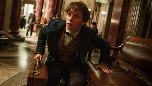 Eddie Redmayne as Newt Scamander in Harry Potter prequel Fantastic Beasts And Where To Find Them (Warner Bros Entertainment Inc/PA)