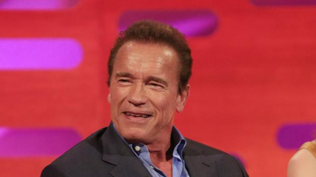 Arnold Schwarzenegger said there was nothing to worry about (Jonathan Brady/PA)