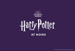Harry Potter At Home (TM and WBEI/Wizarding World/Publishing Rights JKR/PA)