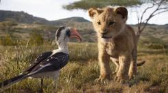 Beloved: The Lion King has been remade