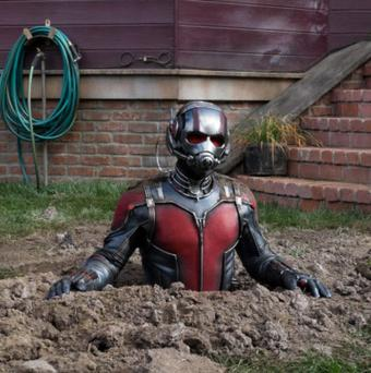 Ground-breaking: Ant-man's adventures feel different to those of other superheros
