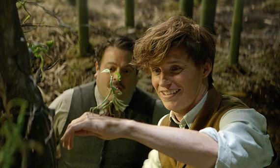 Dan Fogler and Eddie Redmayne in a scene from Fantastic Beasts