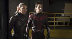 Plenty of fun: Evangeline Lilly and Paul Rudd in 'Ant-Man And The Wasp'