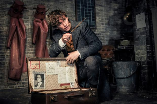 Eddie Redmayne stars in 'Fantastic Beasts' - a dour, swollen, and worst of all, boring slog