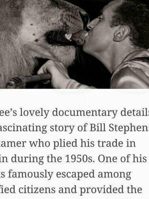 Bill Stephens with lion