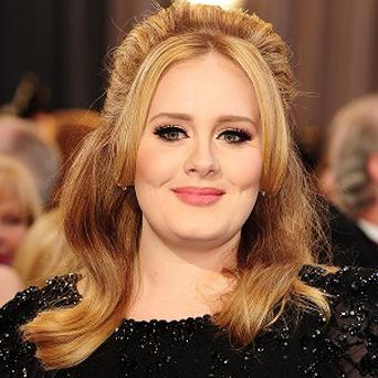 Adele is reportedly on the wish list for the Rolling Stones' Hyde Park gigs