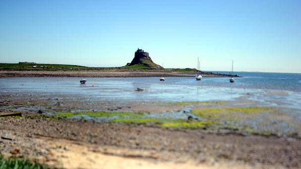 Album Fog On The Tyne was created on Lindisfarne