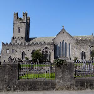 National treasure: St Mary's Cathedral, Limerick, was the launch pad for George Osborne