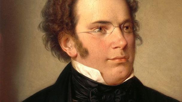 A diary of notes: Schubert